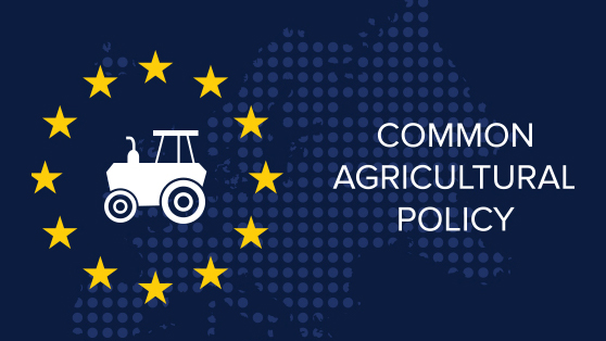 A new european common agricultural policy (CAP)
